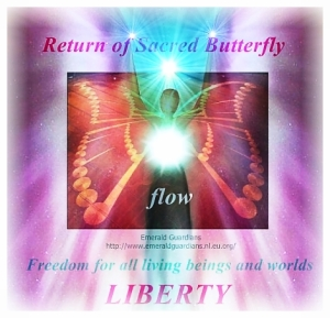 human-butterfly-now-flow-2