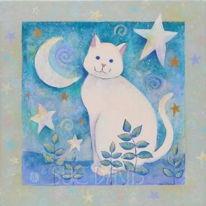 magic star cat print