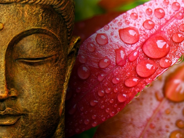 buddha_autumn_rain_wallpaper-1152x864