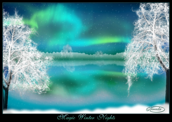 Magic_Winter_Nights_by_Nameda 2a