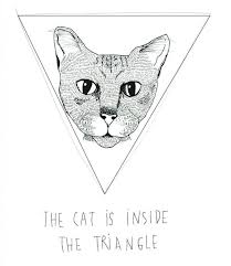 the cat inside the triangle