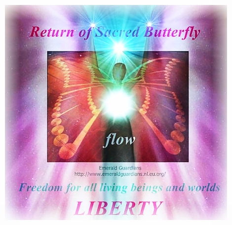 human-butterfly-now-flow 2
