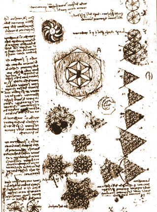flower of life da vinci